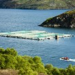 Salmon farm, Loch a Chairn Bhain, Highlands, Scotland — Stock Photo