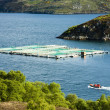 Salmon farm, Loch a Chairn Bhain, Highlands, Scotland — Stock Photo #22517981