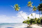 Northern coast of Trinidad, Caribbean — Stock Photo