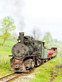 Narrow gauge railway, Banovici, Bosnia and Hercegovina — Stock Photo