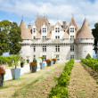 Monbazillac Castle with vineyard, Aquitaine, France — Stock Photo #22520581