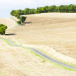 Field with a road, Gers Department, France - Stock Photo