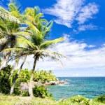 Balandra Bay, Trinidad — Stock Photo