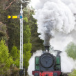 Steam train, Strathspey Railway, Highlands, Scotland — Stock Photo #23607529