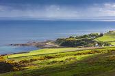 Landschap in de buurt van helmsdale, highlands, Schotland — Stockfoto