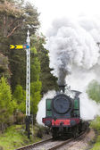 Steam train, Strathspey Railway, Highlands, Scotland — Стоковое фото
