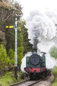 Steam train, Strathspey Railway, Highlands, Scotland — Stock Photo