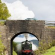 Steam train, Strathspey Railway, Highlands, Scotland - Stok fotoğraf
