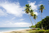 Foul Bay, Barbados, Caribbean — Stock Photo