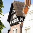 Half timbered house, Ludlow, Shropshire, England — Stock Photo #25122547