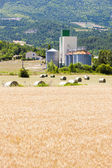 Field with straw bales, Drome Department, Rhone-Alpes, France — Stock Photo
