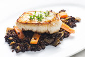 Pikeperch fillet with lentils and carrot — Foto Stock