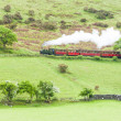 Steam train, Talyllyn Railway, Wales — Stock Photo #25792091