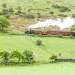 Stock Photo: Steam train, Talyllyn Railway, Wales