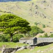 Stock Photo: Landscape of Lake District, Cumbria, England