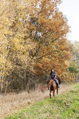 Equestrian on horseback in autumnal nature — Stock Photo