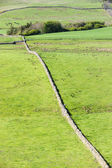 Hadrian's wall, Northumberland, England — Stock Photo