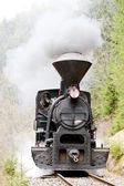 Steam locomotive, Ciernohronska Railway, Slovakia — Stock Photo