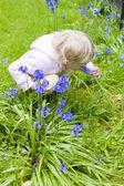 Liten flicka i trädgården — Stockfoto
