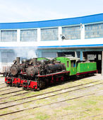 Steam locomotives in depot, Kostolac, Serbia — Stock Photo