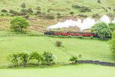 Steam train, Talyllyn Railway, Wales — Stock Photo