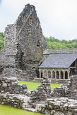 Ruins of Glenluce Abbey, Wigtownshire, Scotland — Stock Photo