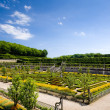Villandry Castle's garden, Indre-et-Loire, Centre, France — Stock Photo