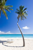 Bottom Bay, Barbados, Caribbean — Stock Photo