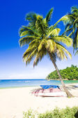 Castara Bay, Tobago — Stock Photo