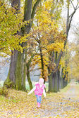 Little girl in autumnal alley — Foto de Stock