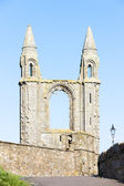 Ruins of St. Rule's church and cathedral, St Andrews, Fife, Scot — Stock Photo