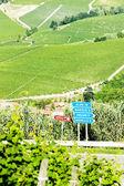 Vineyars near Barolo, Piedmont, Italy — Stock Photo