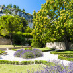 Garden in Les Baux de-Provence, Provence, France — Stock Photo #31085509