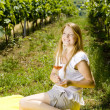 Woman at a picnic in vineyard — Stockfoto