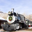 Stem locomotive in Colorado Railroad Museum, USA — Stock Photo #31086793