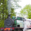 Steam train, Strathspey Railway, Highlands, Scotland — Stock Photo
