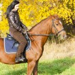 Stock Photo: Equestrian on horseback in autumnal nature