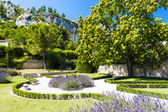 Garden in Les Baux de-Provence, Provence, France — Stock Photo