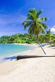 Parlatuvier Bay, Tobago — Stock Photo