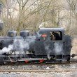 Last day of service of CKD steam locomotive n. 5 (1.4.2008), Cie — ストック写真
