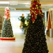 Stock Photo: Christmas decoration, Tobago