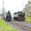 Stock Photo: Steam locomotives, Oskova, Bosniand Hercegovina
