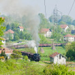 Steam freight train, Durdevik, Bosnia and Hercegovina — Foto Stock