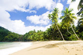 Englishman's Bay, Tobago — Stock Photo