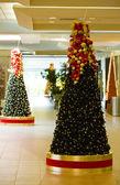 Christmas decoration, Tobago — Stock Photo