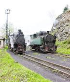 Steam locomotives, Oskova, Bosnia and Hercegovina — Stock Photo