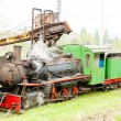 Foto de Stock  : Steam locomotives