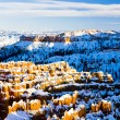 Bryce Canyon National Park — Stock Photo #34521791