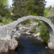 Old Packhorse bridge — Stock Photo