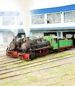 Steam locomotives in depot — Stock Photo